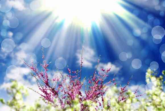 Une grande lumière venue du ciel apportant la connaissance spirituelle de qui Je Suis inonde la nature et la Terre.