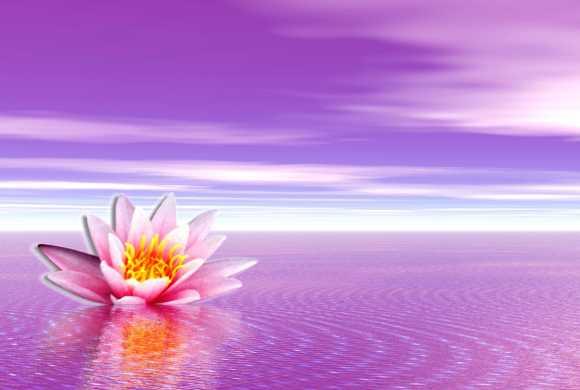 Symbolisant la paix, la douceur, l'unité, ce nénuphar ou lotus rose sur une eau tranquille nous aligne à notre Potentiel, à notre vastitude, à notre connexion absolue avec Tout Ce qui Est.